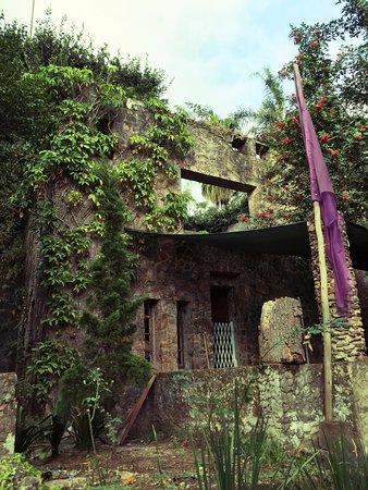 Hillcrest, Afrika Selatan: Random buildings on the property.