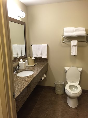 Holiday Inn Express Hotel & Suites Sioux Falls Southwest: photo3.jpg
