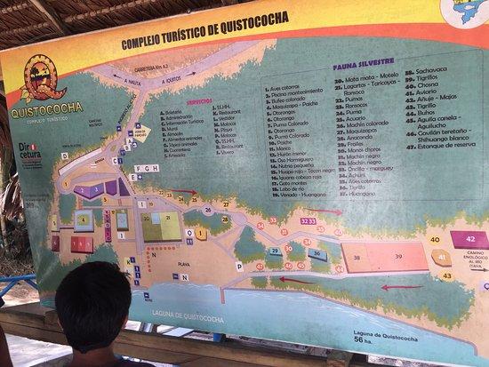 Quistacocha Zoo: photo5.jpg