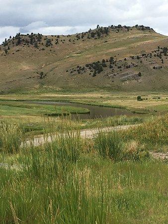 National Elk Refuge: Views at Elk Refuge