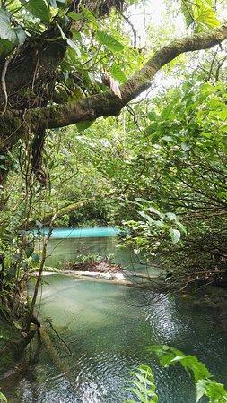 Национальный парк Вулкан Тенорио, Коста-Рика: IMG_20160724_123835_large.jpg