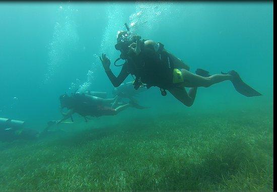 Guerrilla Divers Haiti