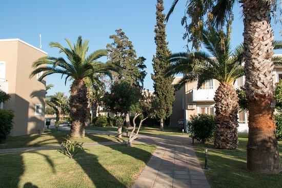 Gambar Hotel Corali