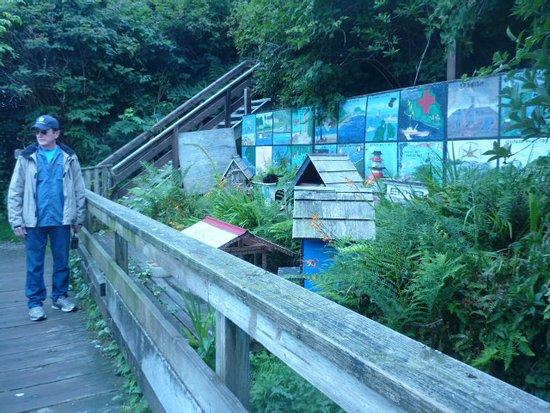 Bamfield, Canada: There is a boardwalk on the island with many interesting sites