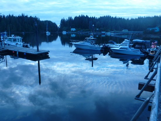 Bamfield, Canada: It's extremely quiet and calm in the morning