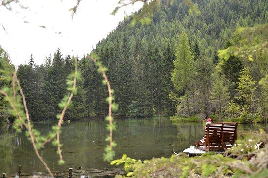 Schatzsuche Langenfeld: Plan d'eau sympa, agréable pour se détendre