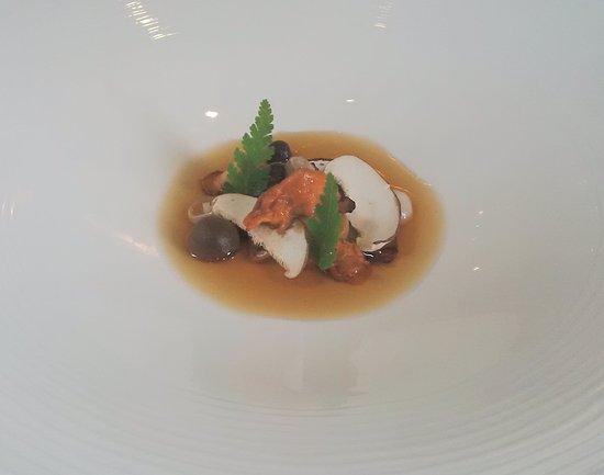 Langho, UK: Mushrooms with herbs (vegetarian gourmet menu)