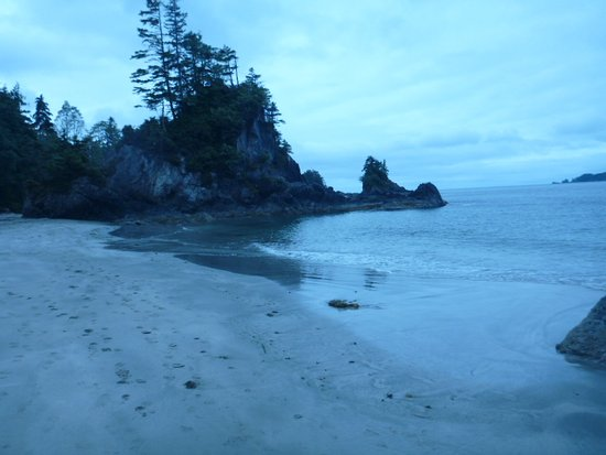 Bamfield, Canada: There are many islands you can explore from the beach, some with caves