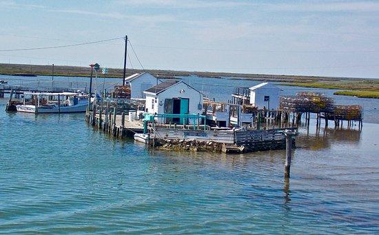 Waterman's Crab Shanties,Tangier Island, VA.