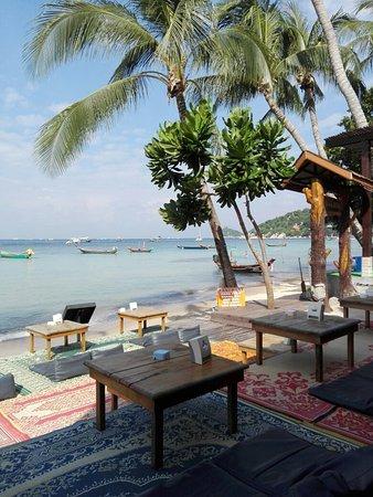 Wind Beach Resort: IMG_20151221_095017_large.jpg