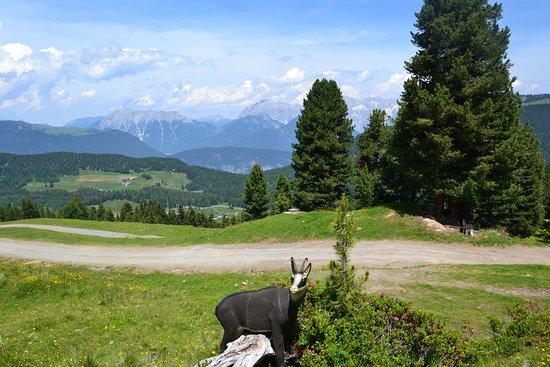 Oetz, Autriche : Widi-versum