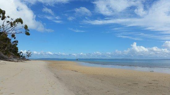 เฮอร์วีย์เบย์, ออสเตรเลีย: Beach at Kingfisher resort