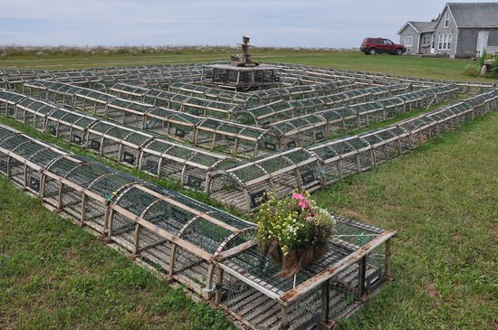 Bay Fortune, Canada: The Lobster Trap Labyrinth - a cool thing for the kids to explore
