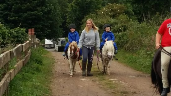 The Mane & 3 R's Horse Rescue Centre