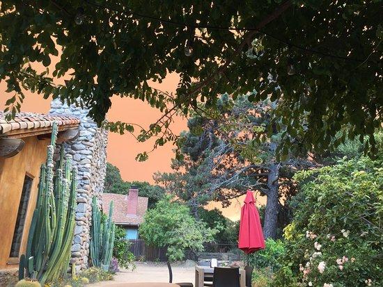 Carmel Valley, CA: View of the garden at Georis