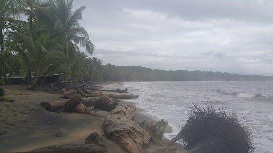 Manzanillo, Costa Rica: 20160715_064604_large.jpg