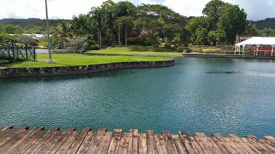 Jardín Botánico de Caguas al finalizar la Avenida Garrido ...