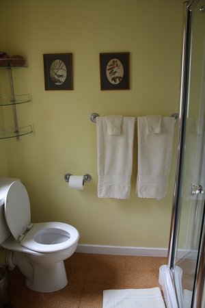 Bed and Breakfast at MellonPatch: Yellow room ensuite