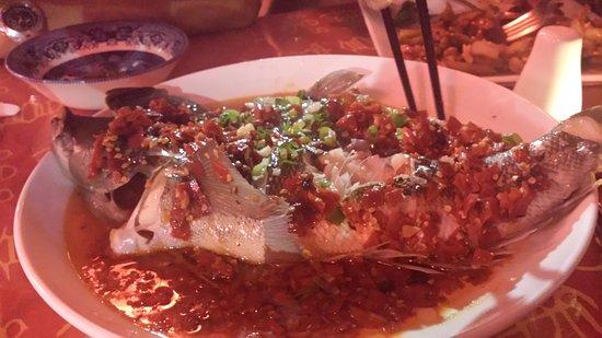 นิวพลีมัท, นิวซีแลนด์: Delicious steamed fish at the Laughing Buddha!