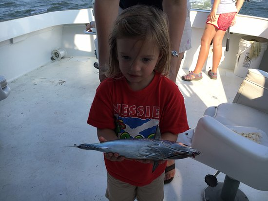 Palmetto, FL: The 3-year-old's catch