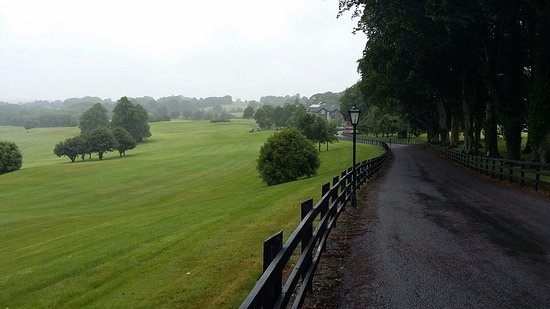Glasson Golf & Country Club: Driveway into hotel is beautiful with woods on one side and the golf course on the other side.