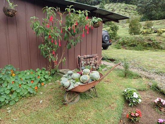San Gerardo de Dota, كوستاريكا: Beautiful location and perfect for quetzal spotting!
