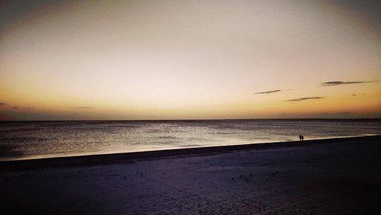 Bilde fra Sandpiper Gulf Resort