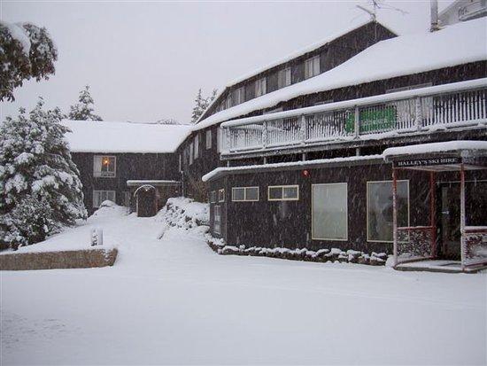 Halleys Lodge
