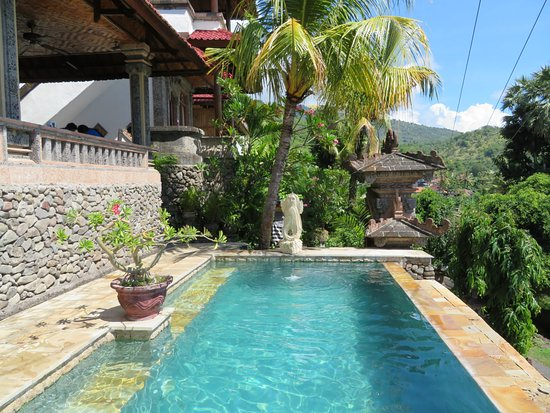 Bayu Cottages Hotel and Restaurant: Pool.