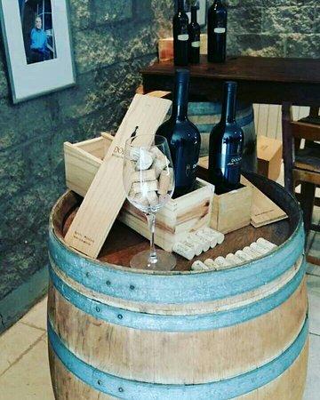 Agrelo, Argentina: Dolium Winery