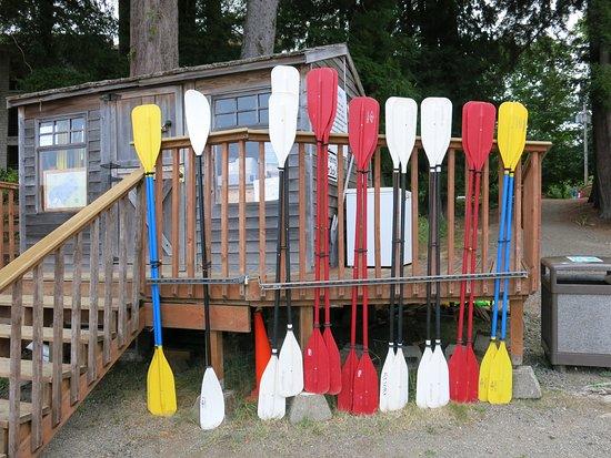 Quinault, Waszyngton: Renta de kayaks