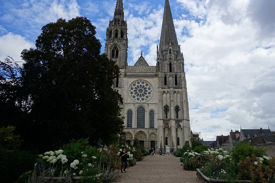 Chartres Cathedral: Arriving at the Cathedral, preceded by blooming hydrangeas.