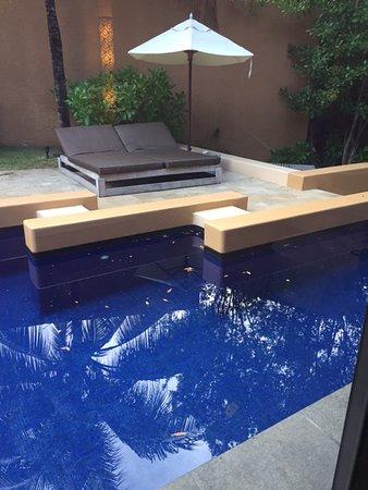 بانيان تري ماياكوبا: Private pool and lounge area at villa