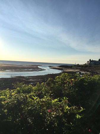 Ogunquit Beach Inn: photo2.jpg