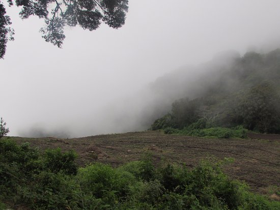 Volcan Baru National Park : Near the start of the hike or end.