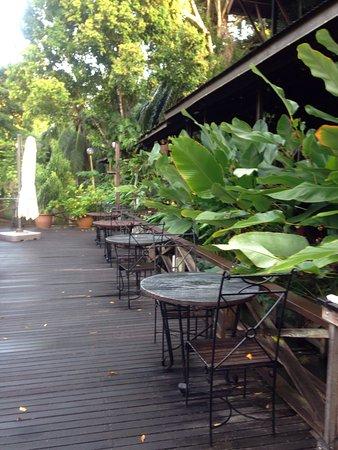 Sepilok, Malasia: photo2.jpg