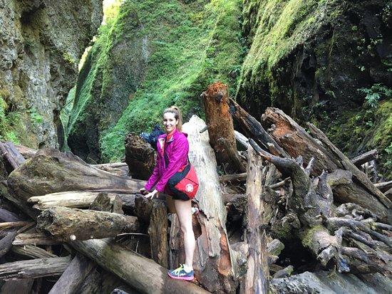 Cascade Locks, OR: The log jam - So fun!