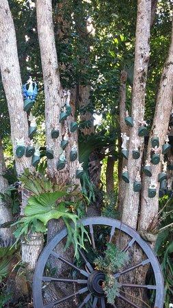 Maleny, Avustralya: Gorgeous fairy garden for the kids