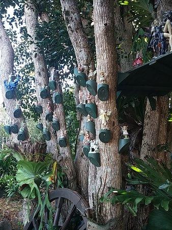 Maleny, أستراليا: fairy garden