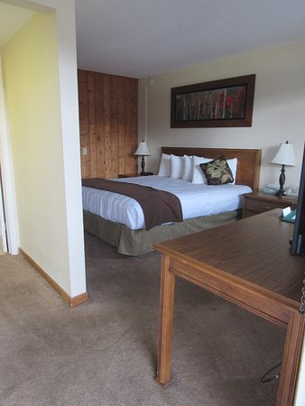 Coyote Mountain Lodge: Small, clean, quiet room. Nothing fancy.