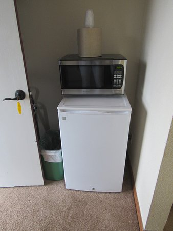 Coyote Mountain Lodge: Small fridge and microwave.