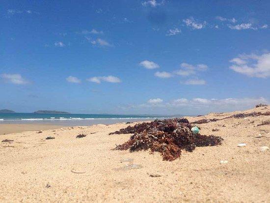 Lamberts Beach
