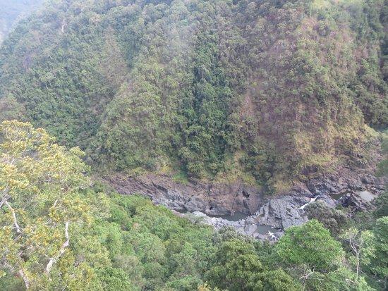 Smithfield, Australia: Near the Falls on way down to Cairns from Kuranda