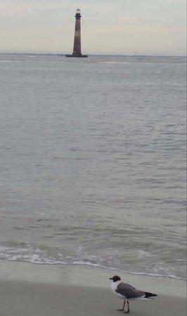 Folly Beach, SC: lighthouse