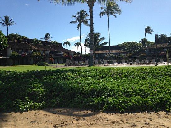 Maalaea Surf Resort: View of condos from the beach