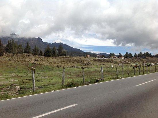 Sierra de La Culata National Park, Venezuela: Carretera Páramo la Culata
