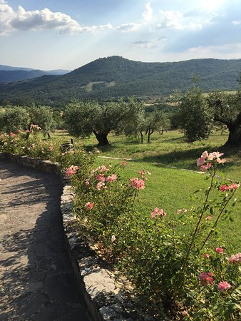 Villa di Monte Solare: These were just a few of the beautiful memories of the Villa Monte Solare