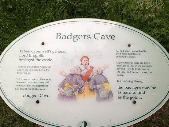 Blarney Castle & Gardens: photo2.jpg