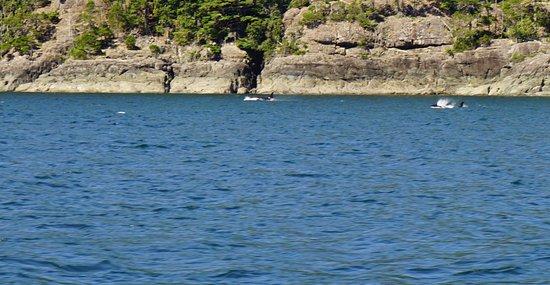 Alert Bay, Canadá: photo0.jpg
