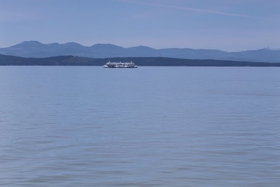 """Tsawwassen, Canada: Ferries """"passing in the night"""" - well, daytime, at least"""